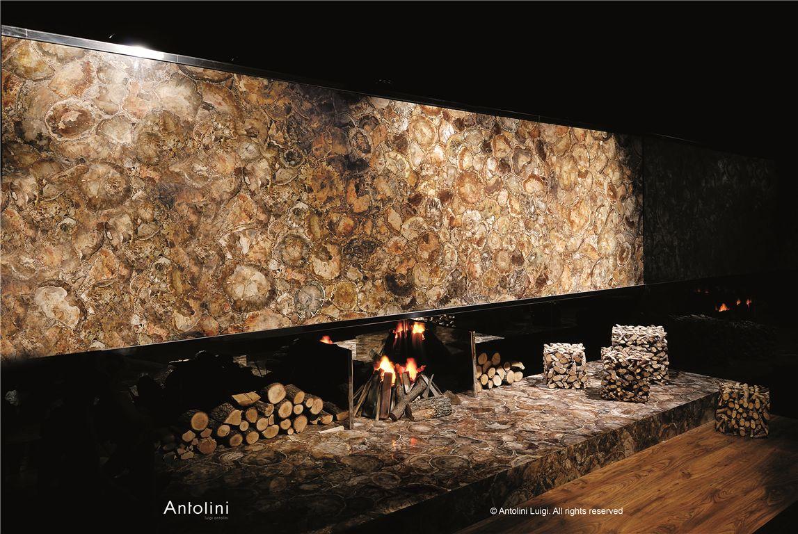Img1513 petrified wood medium galleria of stone arizona for Azerocare