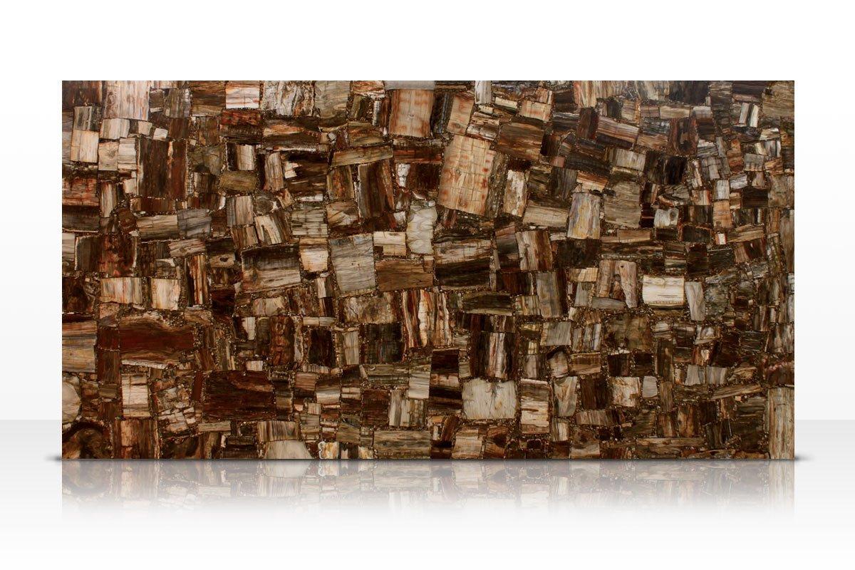 Retro petrified wood galleria of stone arizona for Azerocare