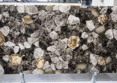 Petrified Wood- Precioustone